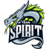 team spirit logo